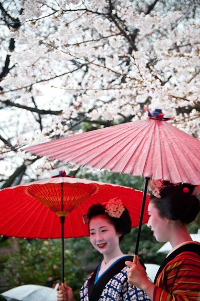 06 - Gion Geisha