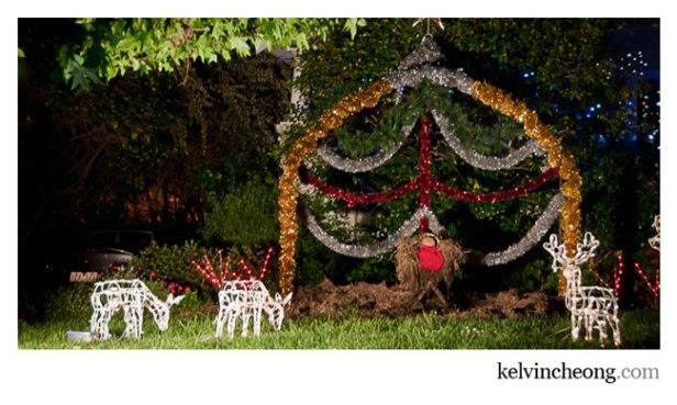 boulevard-christmas-lights-09