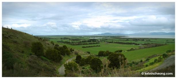 toora landscape