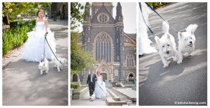 melbourne-pre-wedding-photography-wd-03