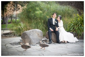 kc-melbourne-wedding-photographer-kr-24